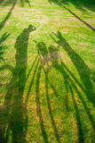 Ombre d'un cycliste sur l'herbe Photographie stock libre de droits