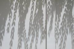Ombre dagli alberi che cadono sul recinto Immagini Stock