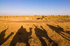Ombre de caravane Photographie stock