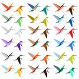 ombre de couleurs du colibri 18 Image libre de droits