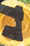 Ombre de hache au-dessus de tronçon d'arbre Photos libres de droits