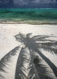 Ombre de palmier sur la belle plage Photographie stock libre de droits