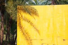 ombre de palmier sur un mur jaune - fond d'été photographie stock