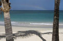Ombre de palmier sur une plage des Caraïbes avec l'océan des Caraïbes coloré Photos libres de droits