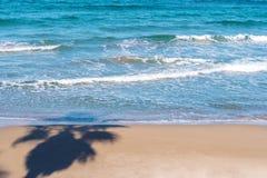 Ombre de paume au-dessus de l'eau de mer Photographie stock libre de droits