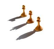 Ombre de roi et de chevalier de la Reine de bâti de gage des échecs trois Photo stock