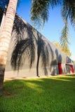 Ombre della palma su una parete della costruzione Fotografia Stock
