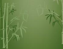 Ombre di bambù Fotografia Stock