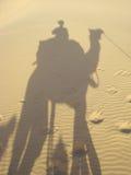 Ombre et chameau image stock