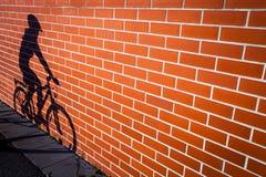 Ombre femelle de cyclistes photographie stock libre de droits