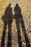 Ombre lunghe su un percorso giallo di autunno fotografia stock