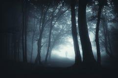Ombre partant furtivement dans la forêt foncée Image libre de droits