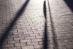 Ombre sul marciapiede pavimentato mattonelle con la prospettiva fondo, illuminazione immagini stock libere da diritti
