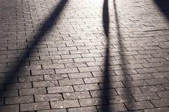 Ombre sul marciapiede pavimentato mattonelle con la prospettiva fondo, illuminazione fotografia stock