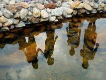 Ombre sur l'eau Photos libres de droits