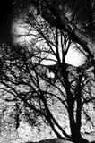 Ombre sur le mur et la lune Photo stock