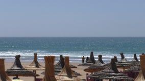 Ombrelli della paglia della spiaggia, fondo di festa archivi video