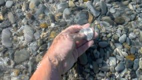 Ombrelli di spiaggia e letti del sole sull'oceano stock footage