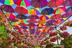 Ombrelli variopinti nel giardino di miracolo del Dubai Immagine Stock Libera da Diritti