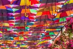 Ombrelli variopinti nel giardino di miracolo del Dubai Fotografie Stock Libere da Diritti