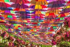 Ombrelli variopinti nel giardino di miracolo del Dubai Fotografia Stock