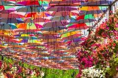 Ombrelli variopinti nel giardino di miracolo del Dubai Fotografia Stock Libera da Diritti