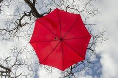 Ombrello cremisi immagine stock libera da diritti