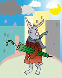 Ombrello del witn del coniglio Immagini Stock Libere da Diritti