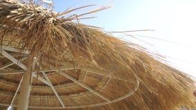 Ombrello di Straw Sun un giorno soleggiato luminoso archivi video