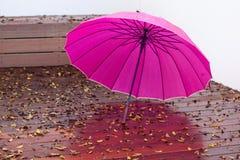 Ombrello dopo la pioggia Fotografia Stock