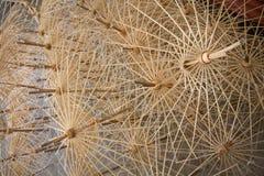 Ombrello fatto a mano Fotografia Stock Libera da Diritti