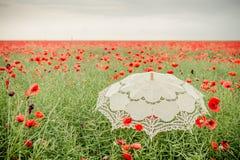 Ombrello nel campo dei papaveri Interpretazione artistica Immagine Stock