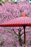 Ombrello rosso tradizionale giapponese Fotografia Stock Libera da Diritti