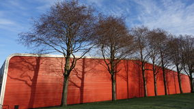 Ombres d'arbre Photo libre de droits