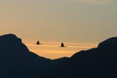 Ombres de lever de soleil image libre de droits
