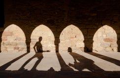 Ombres féeriques de fille et de chat d'homme de queue Image libre de droits