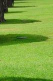 Ombres sous les arbres Photo libre de droits