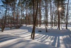 Ombres sur la rivière congelée Photographie stock libre de droits