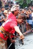 Omed-omedan kyssande ritual, Bali Arkivbild