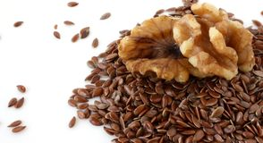 Omega-3 Fatty Acids: Walnuts and Flax Seeds. Walnuts and flax seeds--two excellent plant-based sources of omega-3 fatty acids Royalty Free Stock Photography