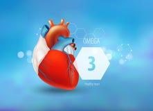 Omega 3 Gezond Hart vector illustratie