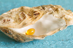 Omega 3 pill in oyster Royalty Free Stock Photography