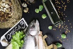 Omega 3 source. Healthy fat salmon or trout, oil, nuts, seeds, chia, lentils, brussels sprouts, eggs Royalty Free Stock Image