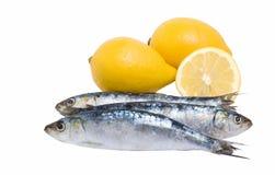 Omega and vitamins. Close up off three sardines and lemons Stock Image