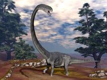 Omeisaurus dinosaur - 3D render. Omeisaurus dinosaur walking among pine trees - 3D render vector illustration