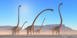 Omeisaurus Dinosaur Desert. An Omeisaurus herd walks across a dry desert in their search for vegetation and water in the Jurassic Period Stock Photo