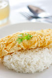 Omelet and Cooked Rice Royalty Free Stock Photo