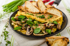 Omelet with mushrooms, lamb's lettuce, herbs and chilli Stock Photos