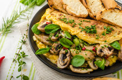 Omelet with mushrooms, lamb's lettuce, herbs and chilli Royalty Free Stock Photo