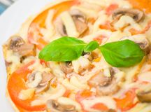 Omelet with mushrooms, tomatoes and cheese Royalty Free Stock Photos